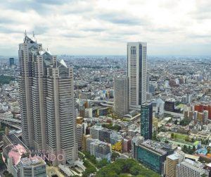 Registrar marca en Japon